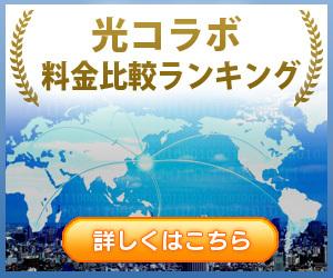 【NTTの光回線(光コラボ)TOP15】料金比較ランキング!